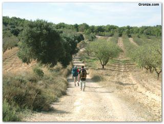De camino a Fabara