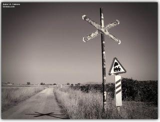 De camino a Puebla de Sancho Pérez, Vía de la Plata