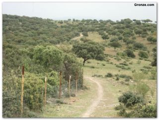 De camino a Galisteo