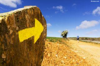Flecha amarilla en el Camino de Santiago