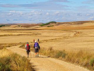 La Meseta, un paisaje que favorece la introspección