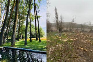 El oasis de San Bol antes y después de la tala