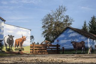 Fisterra Bovine World, murales con las diversas razas de vacuno criadas