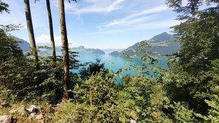 Lago de los Cuatro Cantones - Vierwaldstättersee