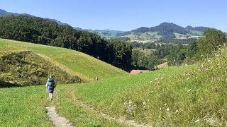De camino a Fribourg