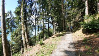 Entre Interlaken y Merligen, junto al lago Thun