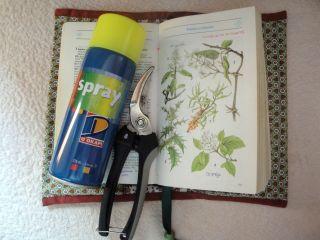 Las tijeras de podar, un espray fluorescente y el libro de plantas, curiosos objetos que Aída suele llevar en sus caminos