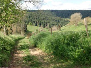 Montes de Velay, de camino a Montfaucon-en-Velay