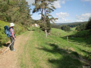 Bonito camino entre Les Sétoux y Montfaucon-en-Velay