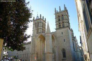 Catedral Saint-Pierre, Montpellier