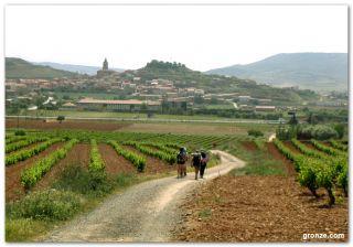 De camino a Navarrete