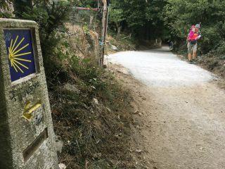 Alteración en el Camino Francés, concello de Paradela