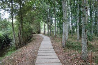 Del Parque da Nogueiras a la Ponte do Barril
