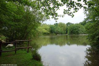 Parque del Lac des Carolins, lago