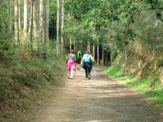 De camino a Pedrouzo