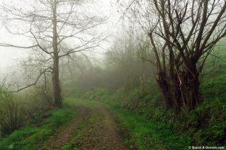 Camino hacia Santiago de Abres