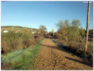 De camino a Quintana del Marco
