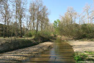 Cauce del río Adaja