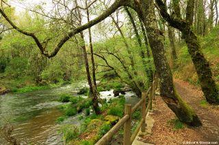 Senda por la orilla del río Barcala, a la salida de Negreira