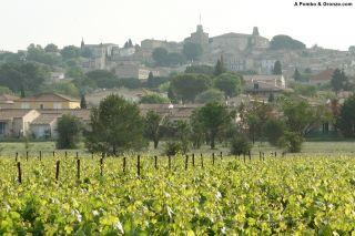 Salida de Gallargues-le-Montueux