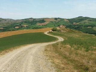 Hacia San Martino in Pedriolo