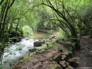 Tramo por la senda fluvial del río Lagares, un oasis verde a la entrada de Vigo