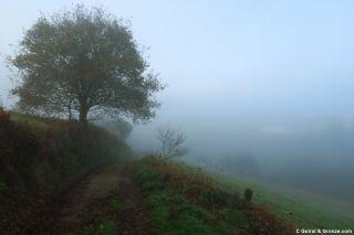 Niebla en el valle, de camino hacia Miou
