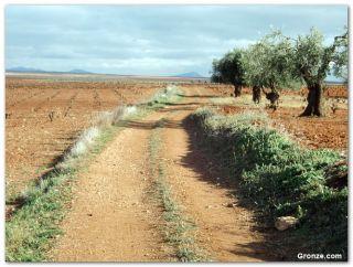 Salida de Villafranca de los Barros