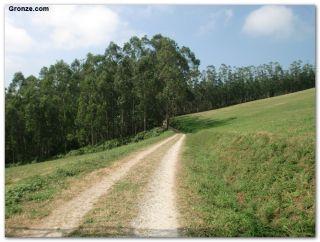 De camino a Villamartín