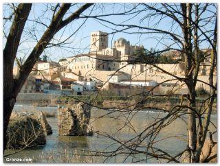 Vestigios del puente romano y la catedral de Zamora